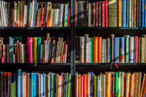 Bücherregal_Bildung_Digital